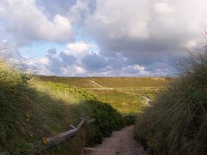 Sylt-Weg-zum-Strand.jpg